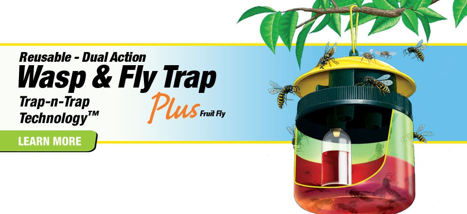 Reusable, Dual-Action Wasp and Fly Traps
